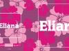 2131-b-eliana-buitenkant